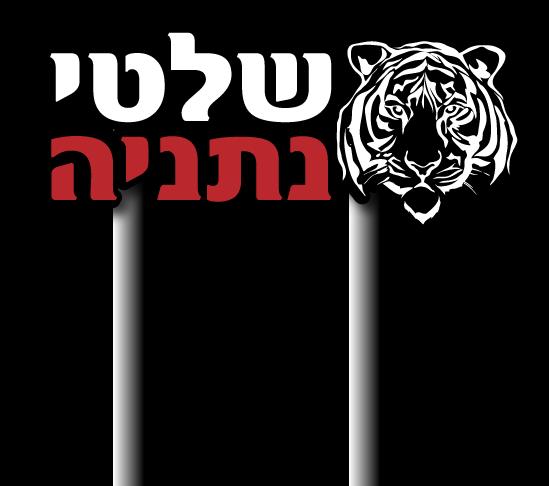 לוגו שלטי נתניה